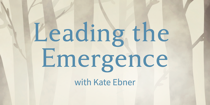 Leading the Emergence Podcast Cover Art